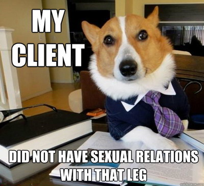 Lawyer_dog-small2