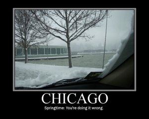 Chicagocold